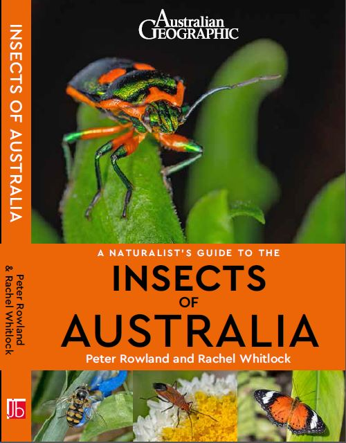 Insects of Australia