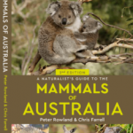 Front cover of A Naturalist's Guide to the Mammals of Australia featuring a Koala